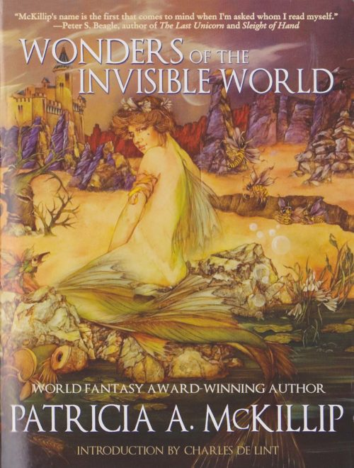 Wonders of the Invisible World book cover